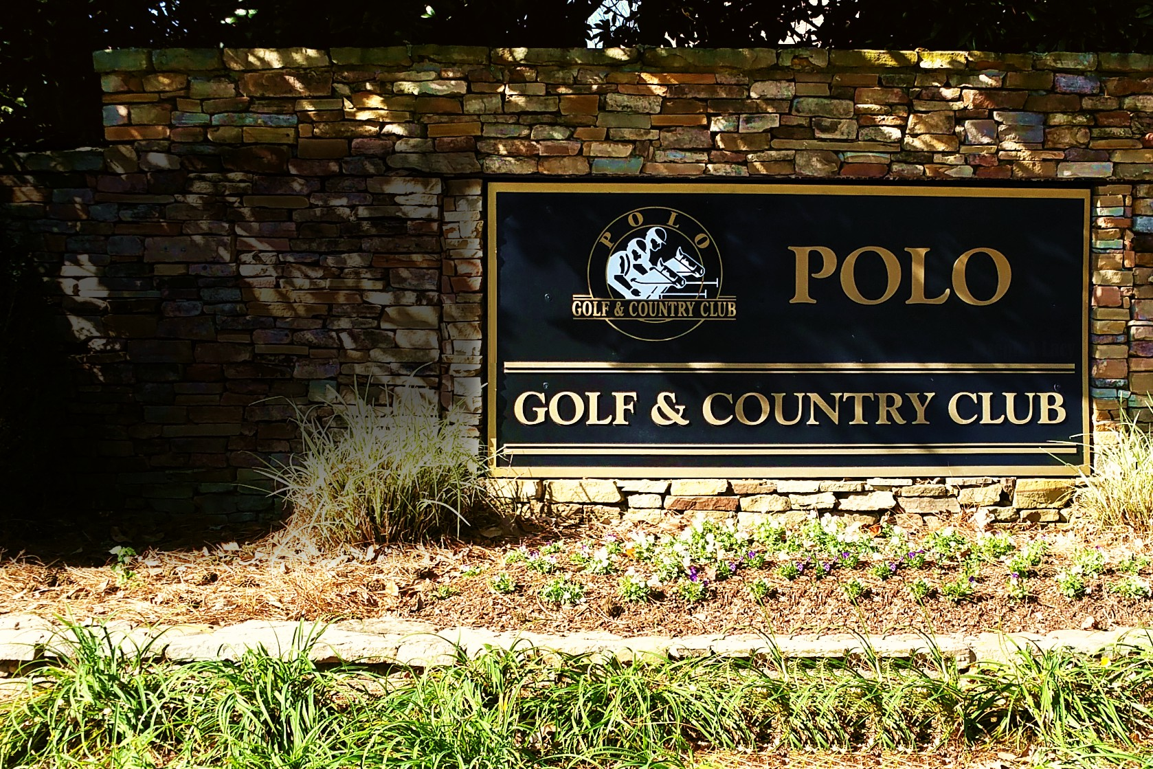 Polo Fields Homes For Sale Cumming Ga